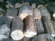 Продаем дрова дуба